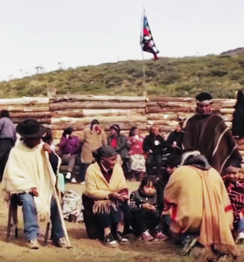 Film about the Mapuche